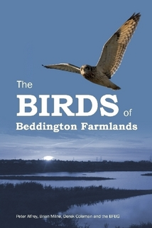 bird_of_beddington_farmlands